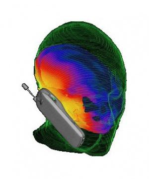 Влияние электромагнитных полей телефона на мозг человека фото